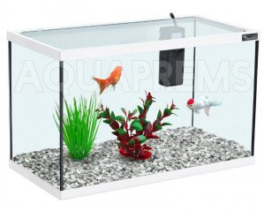 Achat aquarium zolux kit 40 d 39 occasion cash express for Achat aquarium complet